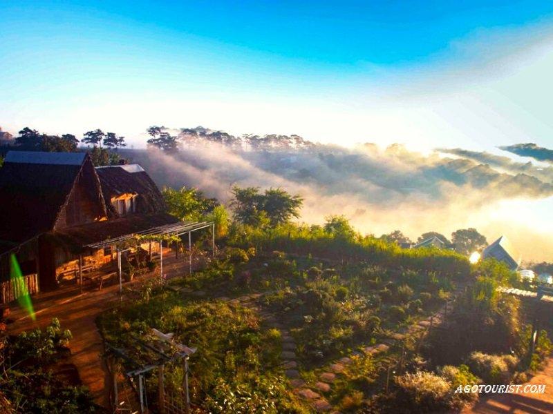Homestay view săn mây đẹp nhất ở Đà Lạt