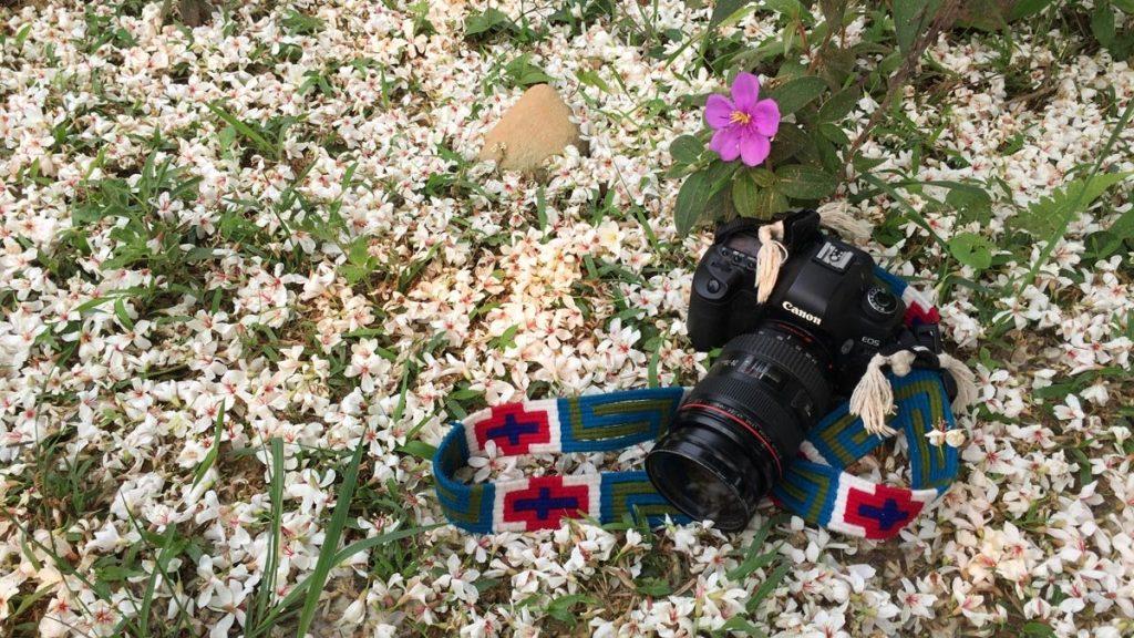 Vẻ đẹp hoa trẩu trên đường tuần tra biên giới - Ảnh: Thủy Trần