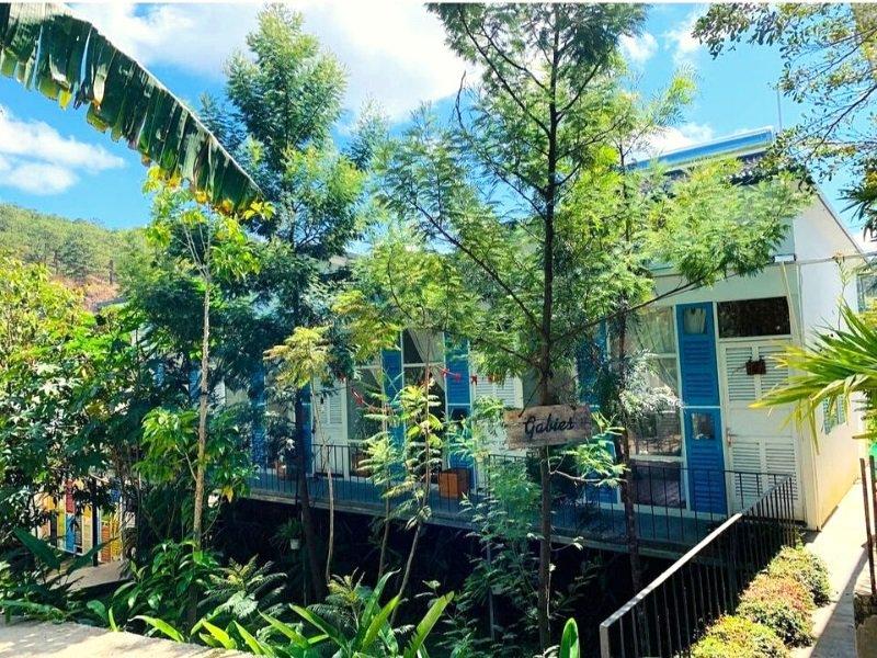 Không gian sân vườn rộng rãi với nhiều cây xanh tại homestay Lalaland Đà Lạt