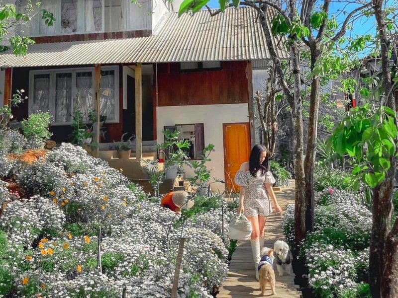 Sunview homestay trên đồi ở Đà Lạt